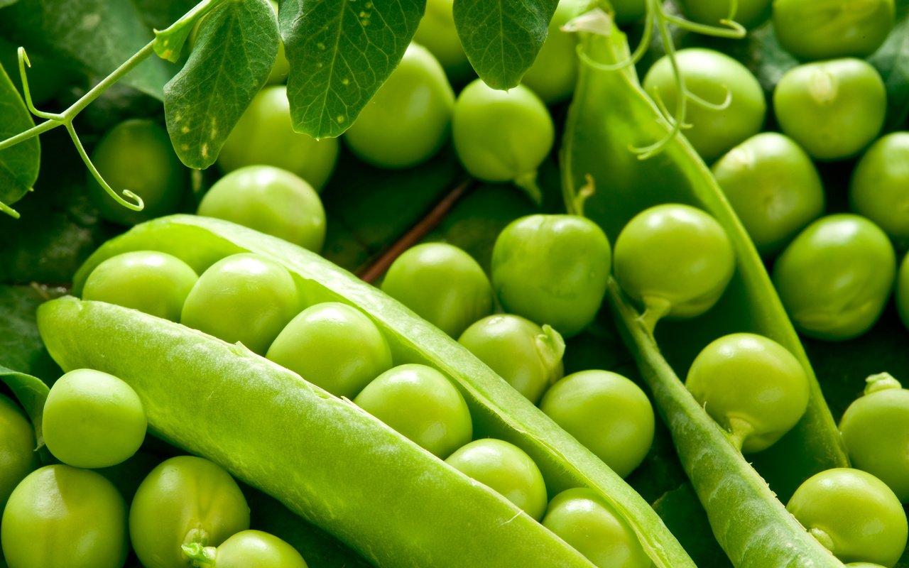 Картинка бобы овощные
