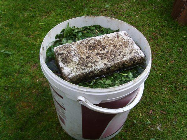 Как подготовить травяную подкормку?