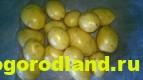 Отечественные сорта картофеля. Раннеспелые и среднеспелые 1