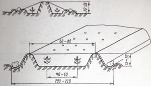 Рис. 2. Бескаркасные пленочные укрытия
