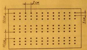 схема посева семян лука-чернушки