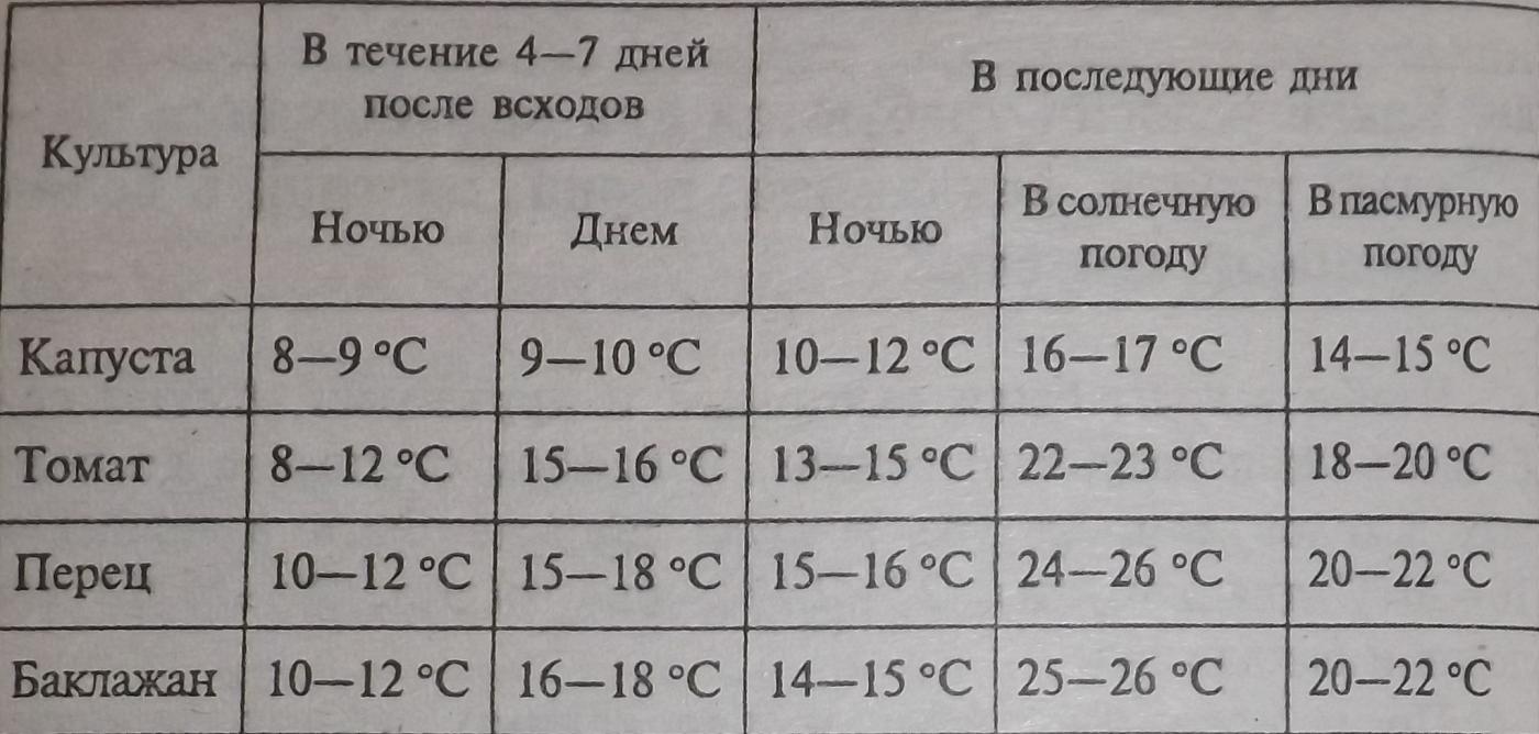 Температура выращивания 33