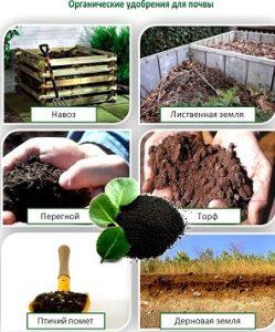 Органические удобрения.