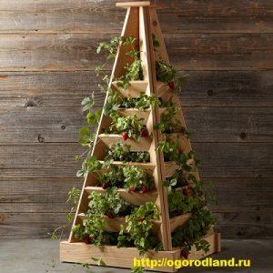 пирамида для ягоды