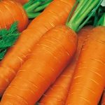 Как правильно хранить свежие овощи, фрукты, ягоды