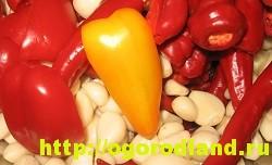 Горлодер из болгарского перца