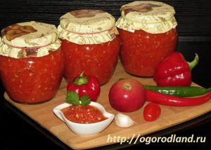 Семь рецептов приготовления аджики с помидорами.