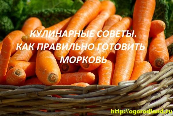 Как правильно приготовить морковь