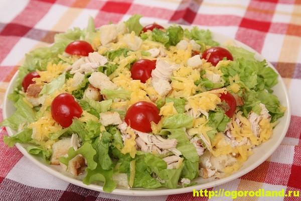 рецепт салата цезарь подробное описание