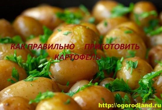 Советы по приготовлению картофеля.