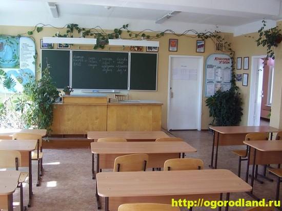 Растения для школы