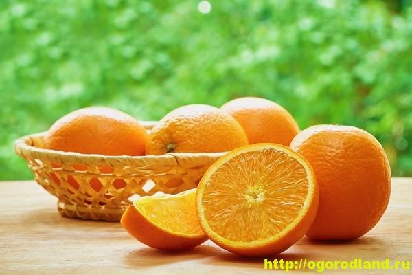 Апельсин. Лечебные свойства.