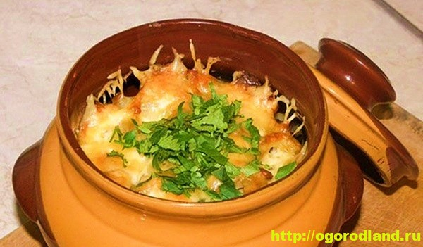 свинина с грибами и картошкой в горшочке в духовке рецепт с пошагово