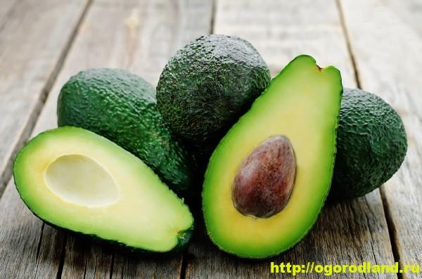 Лекарственные свойства авокадо.