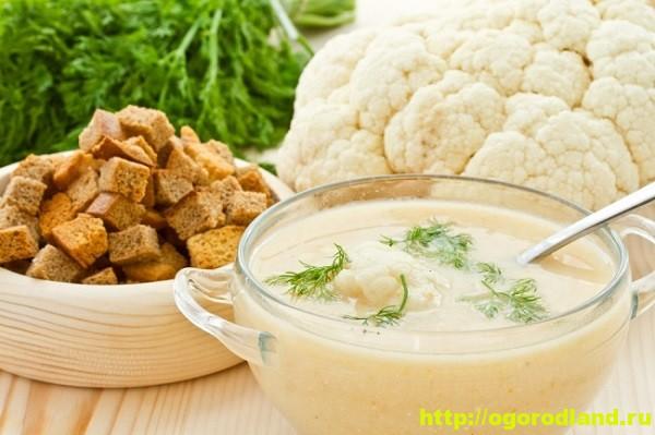 Молочный суп из цветной капусты и курицы