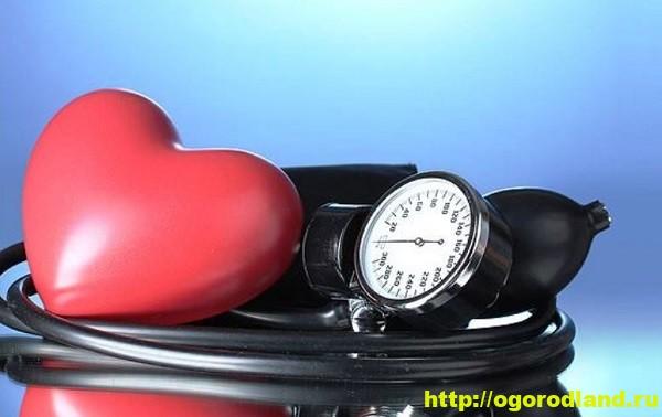 Понижаем артериальное давление. 1