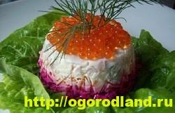 Салат «Селедка под шубой». 10 рецептов салата 7