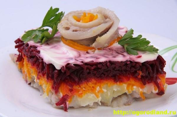 Салат «Селедка под шубой». 10 рецептов салата 1