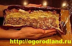 Салат «Селедка под шубой». 10 рецептов салата 16