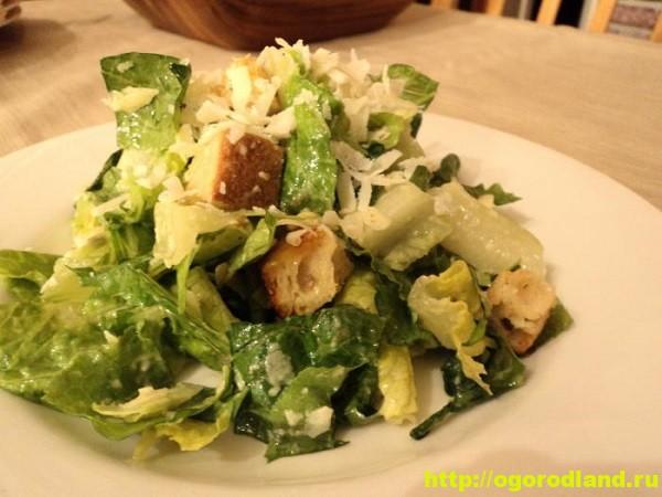 Капустный салат со сливочным сыром, сухариками и кунжутом