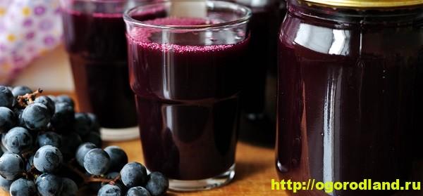 Полезные и лечебные свойства виноградного сока 1