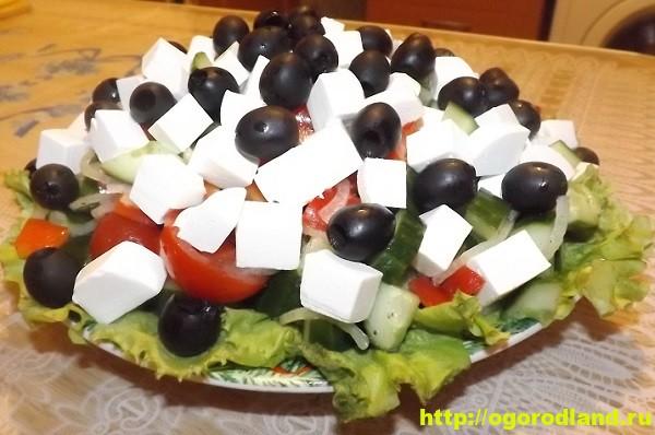 Салат «Греческий». Классический пошаговый рецепт с фото 1