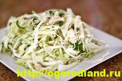 Салат с копченной курицей. Вкусные рецепты салатов 11