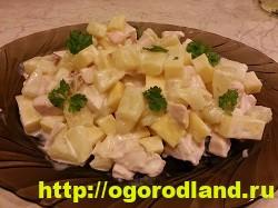 Салат с копченной курицей. Вкусные рецепты салатов 12
