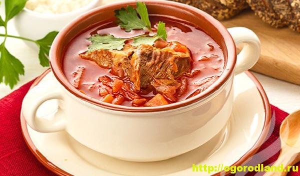 Томатный суп со свининой и овощами. Рецепт приготовления