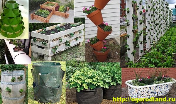 Декоративный огород. Как сделать вертикальные грядки 5