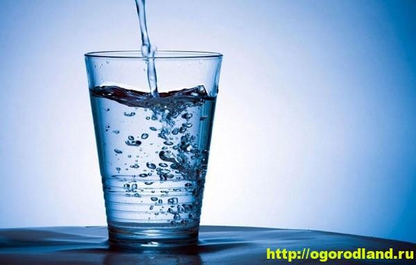 Вода. Полезные свойства воды 1