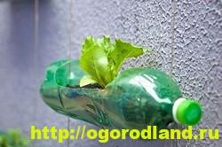 Декоративный огород. Как сделать вертикальные грядки 9