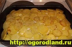 Картошка с мясом в духовке по-капитански. Пошаговый рецепт 13