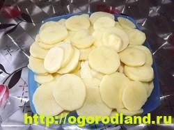 Картошка с мясом в духовке по-капитански. Пошаговый рецепт 10