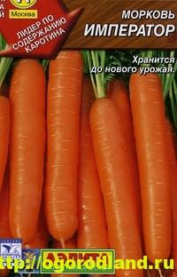 Сорта моркови. Обзор лучших сортов с описанием 10