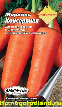 Сорта моркови. Обзор лучших сортов с описанием 2