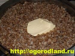 Куриная печень в сметане с гречкой. Рецепт приготовления 6