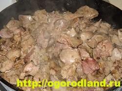 Куриная печень в сметане с гречкой. Рецепт приготовления