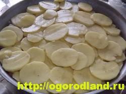 Рыба с картошкой слоями в духовке 19