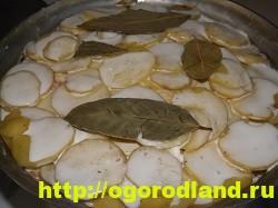 Рыба с картошкой слоями в духовке 23
