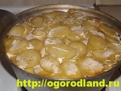 Рыба с картошкой слоями в духовке 24