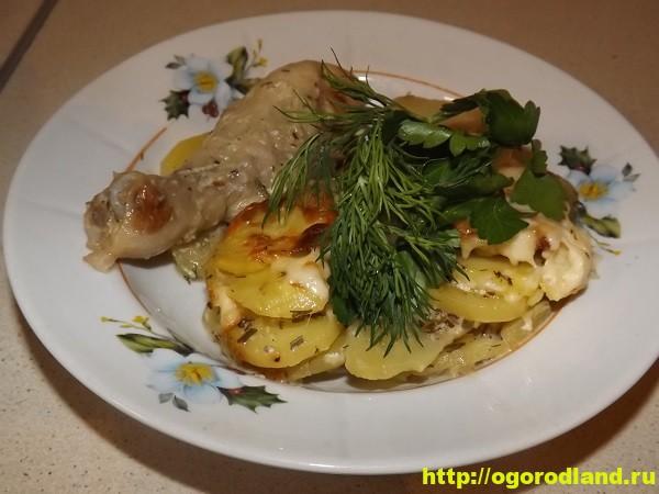 Курица с картошкой в духовке. Пошаговый рецепт с фото 3