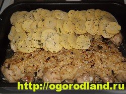 Курица с картошкой в духовке. Пошаговый рецепт с фото 18