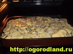 Курица с картошкой в духовке. Пошаговый рецепт с фото 20