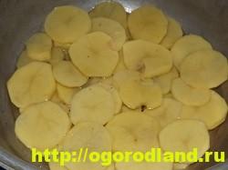 Рыба с картошкой слоями в духовке 10