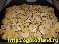 Курица с картошкой в духовке. Пошаговый рецепт с фото 19
