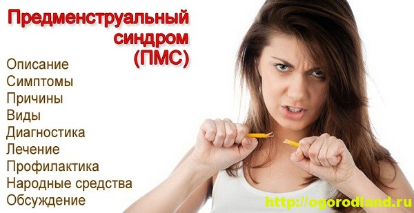 Предменструальный синдром (ПМС). Ежемесячная диета 1
