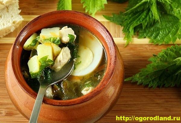 Зеленый борщ с крапивой. Рецепт приготовления 1