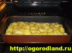 Картофель в духовке, запеченный кусочками 11