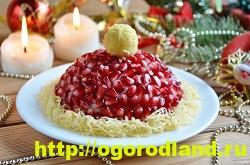 «Красная шапочка» - салат с курицей, орехами и гранатом 2